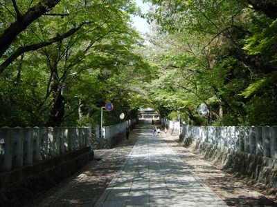 Photo_71_2